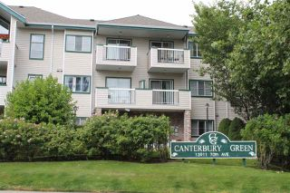 Photo 1: 219 13911 70 Avenue in Surrey: East Newton Condo for sale : MLS®# R2189582