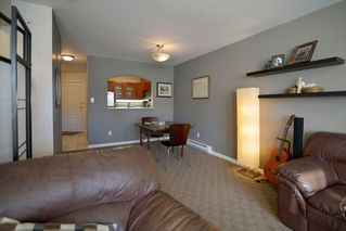 Photo 12: 406 3738 NORFOLK STREET: Condo for sale : MLS®# R2014068