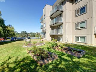 Photo 13: 403 3240 Glasgow Avenue in VICTORIA: SE Quadra Residential for sale (Saanich East)  : MLS®# 382346