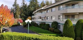 "Photo 11: 245 2451 GLADWIN Road in Abbotsford: Abbotsford West Condo for sale in ""Centennial Court"" : MLS®# R2321463"