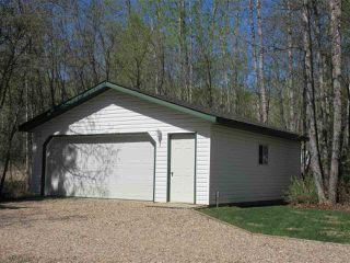 Photo 30: 1608 Long Lake Drive: Long Lake House for sale : MLS®# E4136866