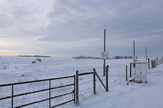 Photo 29: 21013 TWP RD 524: Rural Strathcona County House for sale : MLS®# E4138972