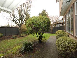 Photo 18: 12483 204 Street in Maple Ridge: Northwest Maple Ridge House for sale : MLS®# R2334396