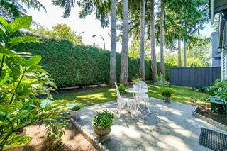 """Photo 12: 6 14909 32 Avenue in Surrey: King George Corridor Townhouse for sale in """"Ponderosa"""" (South Surrey White Rock)  : MLS®# R2393101"""