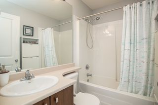"""Photo 15: 36 11067 BARNSTON VIEW Road in Pitt Meadows: South Meadows Townhouse for sale in """"Coho"""" : MLS®# R2420194"""
