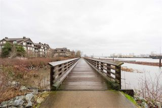 """Photo 19: 208 260 SALTER Street in New Westminster: Queensborough Condo for sale in """"PORTAGE"""" : MLS®# R2428147"""
