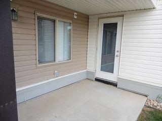 Photo 8: 113 11820 22 Avenue in Edmonton: Zone 55 Condo for sale : MLS®# E4186343
