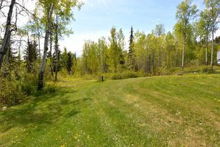 Photo 31: 2847 PTARMIGAN Road in Smithers: Smithers - Rural House for sale (Smithers And Area (Zone 54))  : MLS®# R2457122