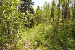 Photo 39: 2847 PTARMIGAN Road in Smithers: Smithers - Rural House for sale (Smithers And Area (Zone 54))  : MLS®# R2457122