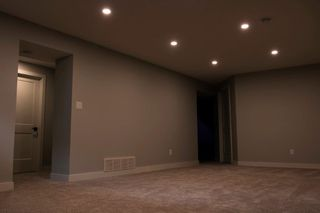 Photo 22: 11615 51 Avenue in Edmonton: Zone 15 House for sale : MLS®# E4200486