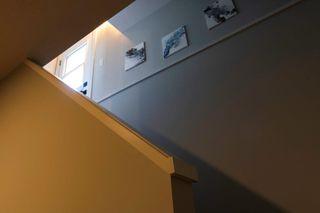 Photo 21: 11615 51 Avenue in Edmonton: Zone 15 House for sale : MLS®# E4200486
