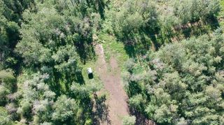 Photo 4: 53143 Range Road 214: Rural Strathcona County Rural Land/Vacant Lot for sale : MLS®# E4202482