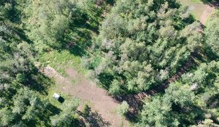 Photo 5: 53143 Range Road 214: Rural Strathcona County Rural Land/Vacant Lot for sale : MLS®# E4202482