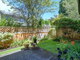Photo 22: 3 2633 Shelbourne St in : Vi Jubilee Row/Townhouse for sale (Victoria)  : MLS®# 850252