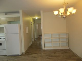 Photo 3: 7242 83 Avenue in Edmonton: House Duplex for rent
