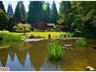 Main Photo: 19341 0 AV in : Hazelmere House for sale : MLS®# F1112537