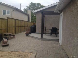 Photo 12: 316 Le Maire Street in WINNIPEG: Fort Garry / Whyte Ridge / St Norbert Residential for sale (South Winnipeg)  : MLS®# 1425076