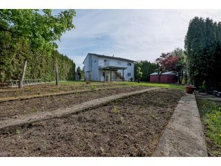 Photo 2: 33512 KINSALE Place in Abbotsford: Poplar House for sale : MLS®# R2059562