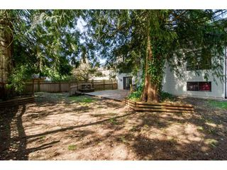 Photo 20: 20838 117 Avenue in Maple Ridge: Southwest Maple Ridge House for sale : MLS®# R2154142