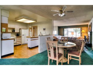 Photo 8: 20838 117 Avenue in Maple Ridge: Southwest Maple Ridge House for sale : MLS®# R2154142
