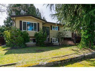 Photo 4: 20838 117 Avenue in Maple Ridge: Southwest Maple Ridge House for sale : MLS®# R2154142