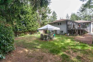 Photo 19: 12505 208TH Street in Maple Ridge: Northwest Maple Ridge House for sale : MLS®# R2199155