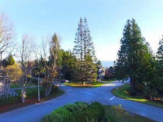 Photo 4: 13093 14 AVENUE in South Surrey White Rock: Home for sale : MLS®# R2016690
