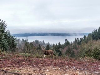 Photo 24: 3485 S Arbutus Dr in COBBLE HILL: ML Cobble Hill House for sale (Malahat & Area)  : MLS®# 773085
