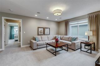 Photo 23: 13 CRANBROOK Place SE in Calgary: Cranston Detached for sale : MLS®# C4164894