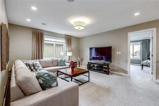 Photo 24: 13 CRANBROOK Place SE in Calgary: Cranston Detached for sale : MLS®# C4164894