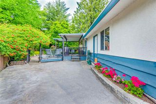 Photo 14: 3739 SKYE Place in Port Coquitlam: Lincoln Park PQ House for sale : MLS®# R2290090