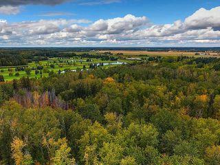 Photo 29: 21416 25 Avenue in Edmonton: Zone 57 House for sale : MLS®# E4142289
