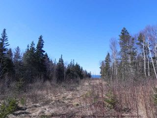 Photo 2: Lot 16 FUNDY BAY Drive in Victoria Harbour: 404-Kings County Vacant Land for sale (Annapolis Valley)  : MLS®# 201902464