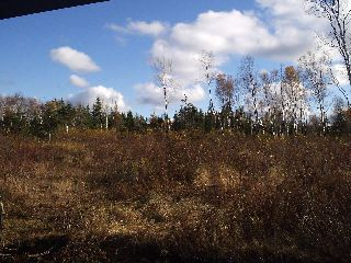 Photo 13: Lot 16 FUNDY BAY Drive in Victoria Harbour: 404-Kings County Vacant Land for sale (Annapolis Valley)  : MLS®# 201902464