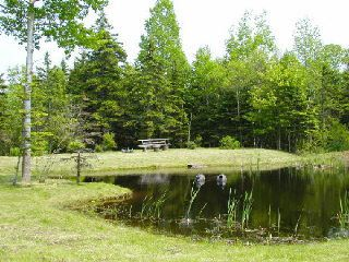 Photo 7: Lot 16 FUNDY BAY Drive in Victoria Harbour: 404-Kings County Vacant Land for sale (Annapolis Valley)  : MLS®# 201902464