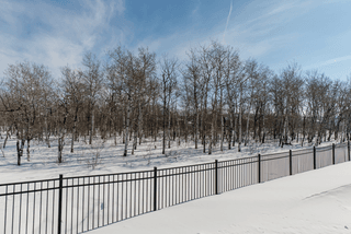 Photo 66: 27 Bridlewood Road in Winnipeg: Bridgwater Forest Residential for sale (1R)  : MLS®# 1904286