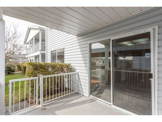 "Photo 18: 181 32691 GARIBALDI Drive in Abbotsford: Abbotsford West Townhouse for sale in ""Carriage Lane"" : MLS®# R2349295"