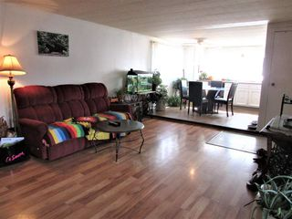Photo 6: 16 The Parkway in Edmonton: Zone 42 Mobile for sale : MLS®# E4151387