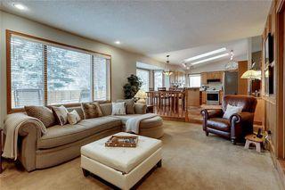 Photo 17: 48 SUN HARBOUR Close SE in Calgary: Sundance Detached for sale : MLS®# C4241657