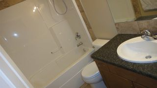 Photo 20: 6119 7 Avenue in Edmonton: Zone 53 House for sale : MLS®# E4159242