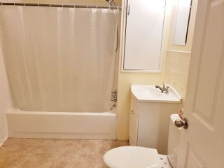 Photo 7: 11212 50 Street in Edmonton: Zone 09 House for sale : MLS®# E4164157