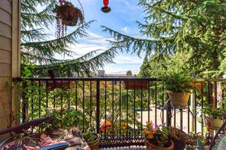 """Photo 15: 301 1121 HOWIE Avenue in Coquitlam: Central Coquitlam Condo for sale in """"THE WILLOWS"""" : MLS®# R2399878"""