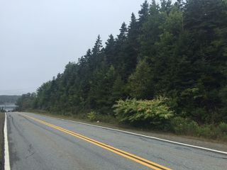 Photo 4: NO Highway 7 in Sheet Harbour: 35-Halifax County East Vacant Land for sale (Halifax-Dartmouth)  : MLS®# 202009247