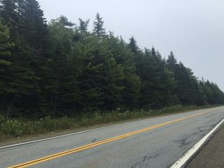 Photo 3: NO Highway 7 in Sheet Harbour: 35-Halifax County East Vacant Land for sale (Halifax-Dartmouth)  : MLS®# 202009247