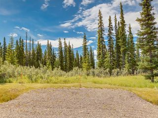 Photo 6: 19 34364 RANGE ROAD 42: Rural Mountain View County Land for sale : MLS®# A1017818