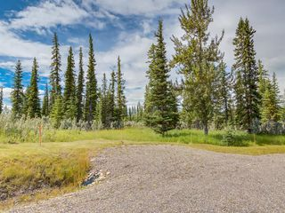 Photo 7: 19 34364 RANGE ROAD 42: Rural Mountain View County Land for sale : MLS®# A1017818