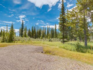 Photo 5: 19 34364 RANGE ROAD 42: Rural Mountain View County Land for sale : MLS®# A1017818