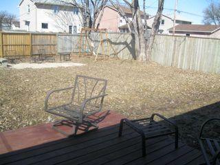 Photo 18: 6 LADYWOOD Drive in WINNIPEG: St James Residential for sale (West Winnipeg)  : MLS®# 1106190