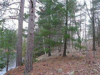 Photo 4: 0 St Georges Lake Road in Central Frontenac: Property for sale : MLS®# X3224210