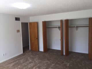 Photo 20: PACIFIC BEACH House for rent : 3 bedrooms : 1730 Los Altos Way in San Diego